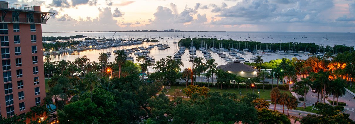 Coconut Grove view